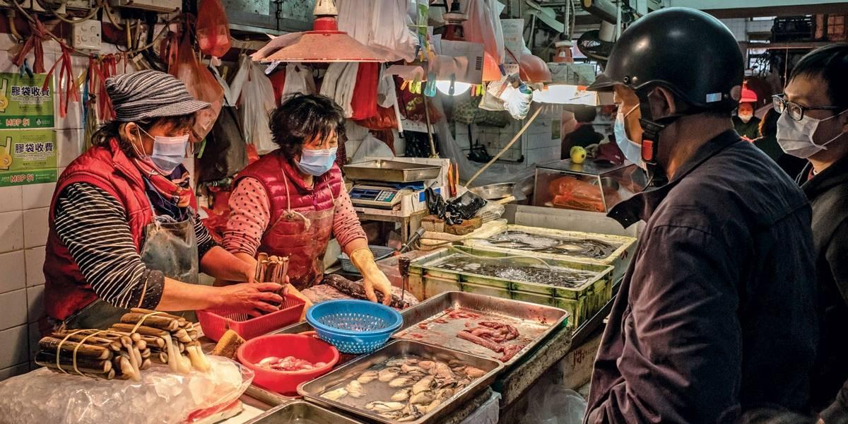 China pensa em proibir comércio ilegal de animais