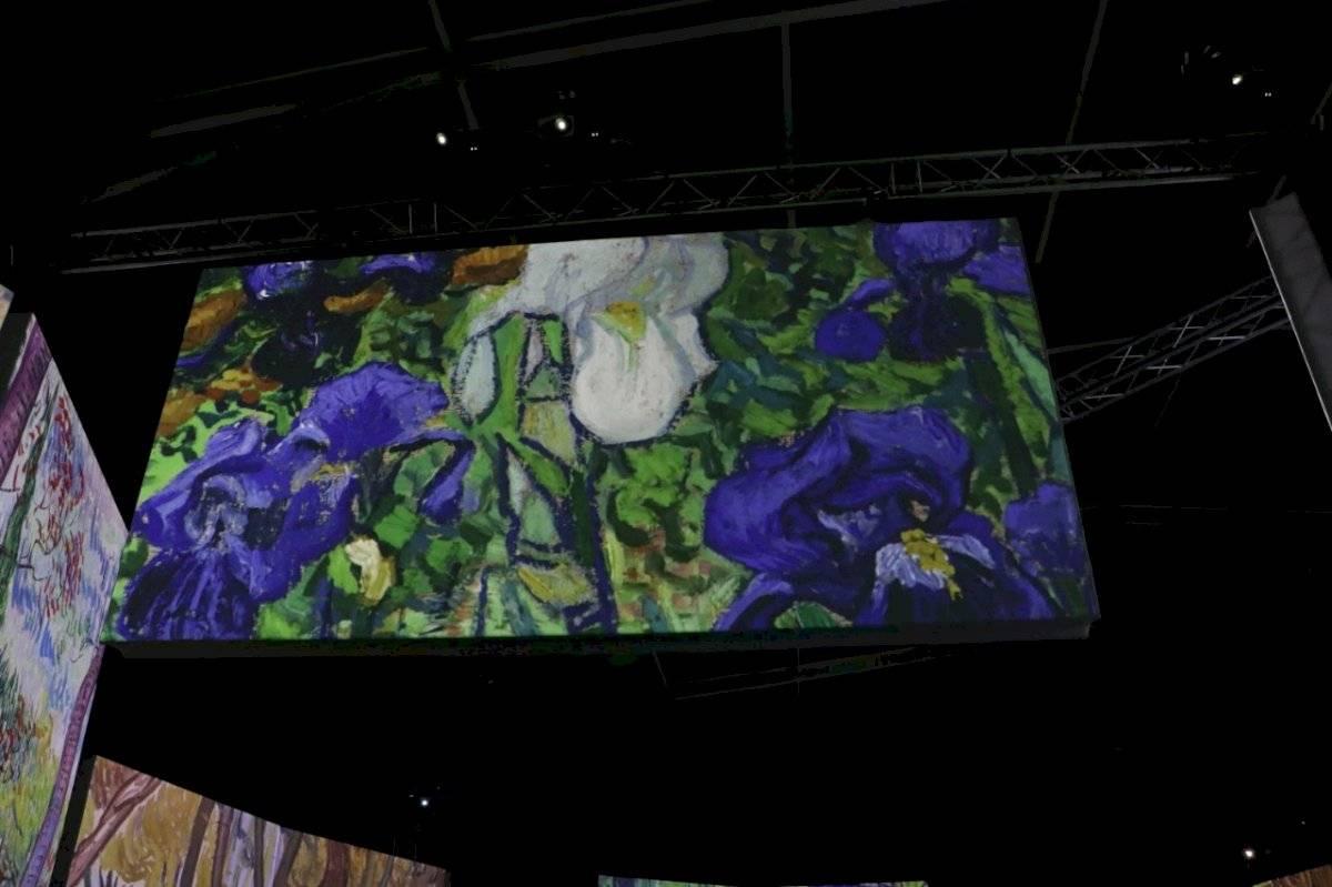Esto es lo que verás en Van Gogh Alice the experience