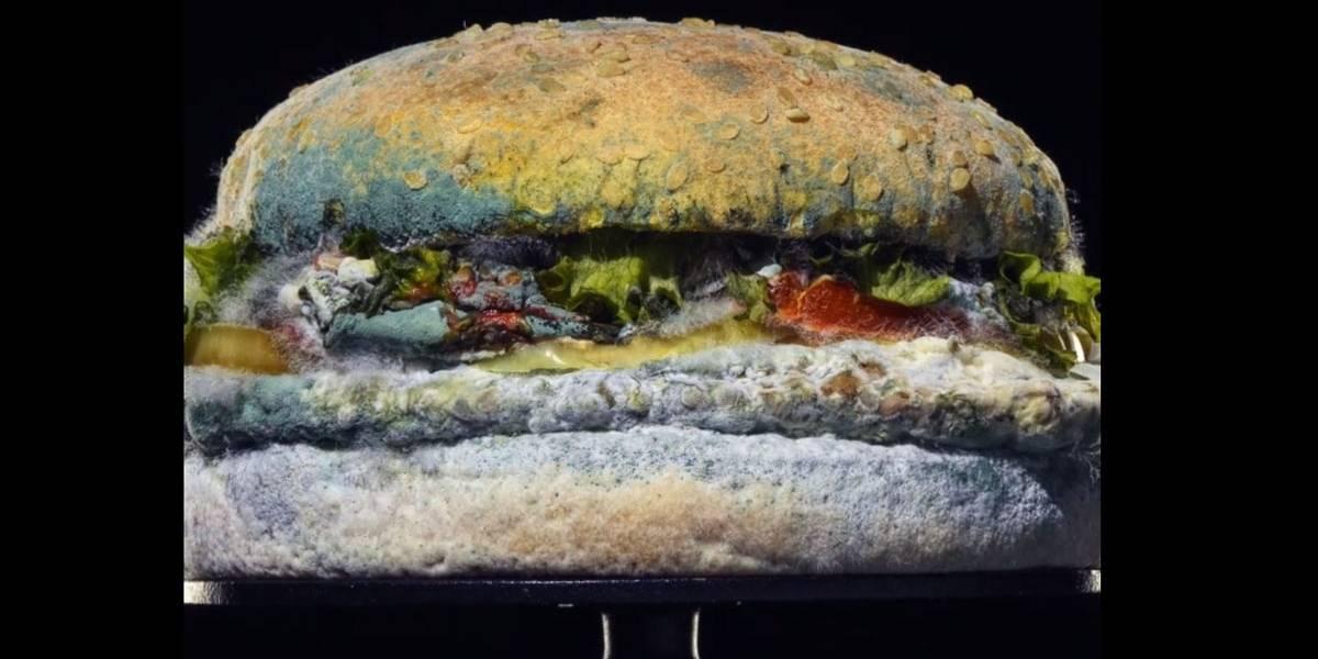 Rede de fast food apresenta hambúrguer em decomposição para mostrar lanche sem conservantes