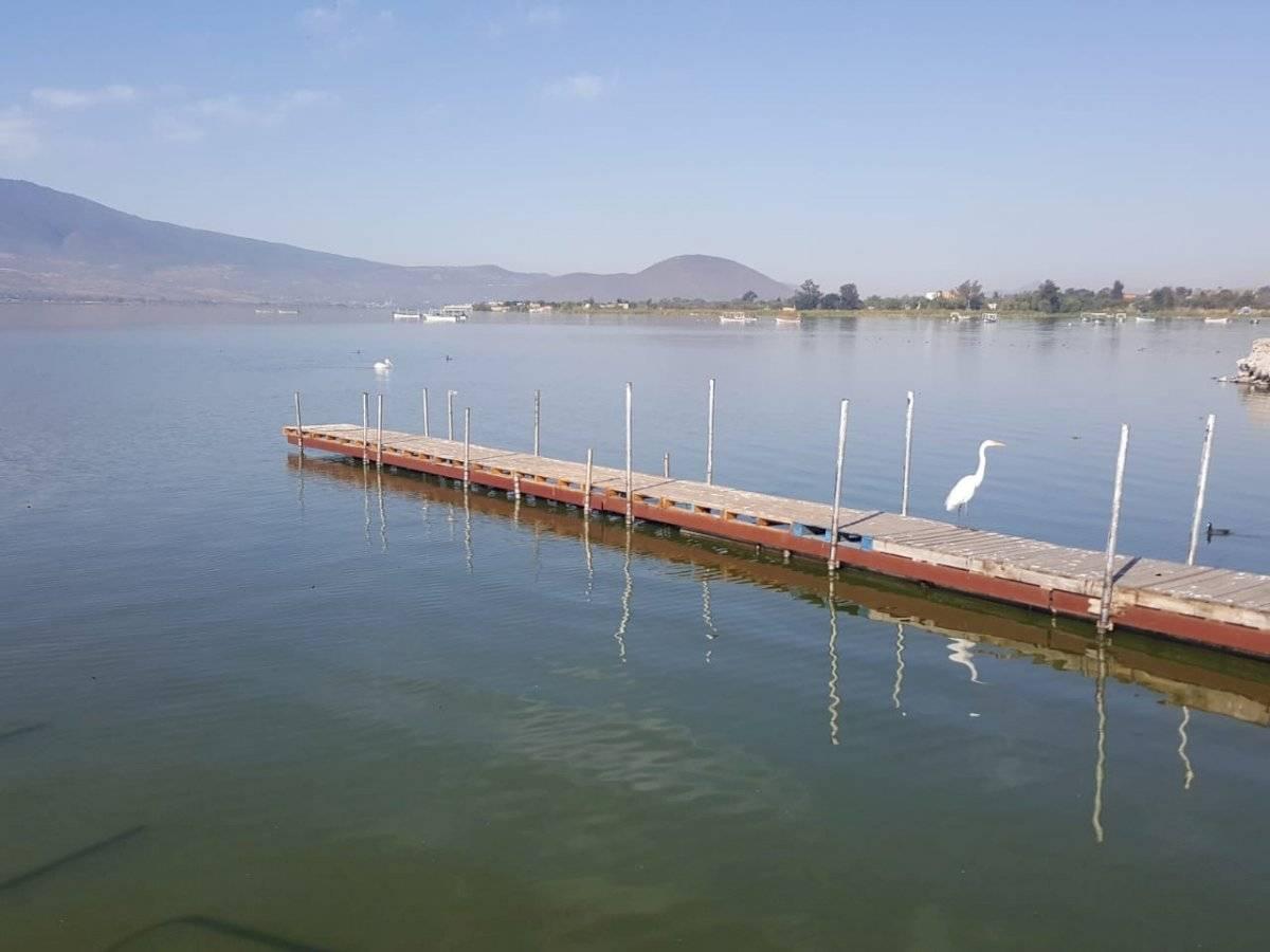 Exigen limpieza de contaminantes en la laguna de Cajititlán