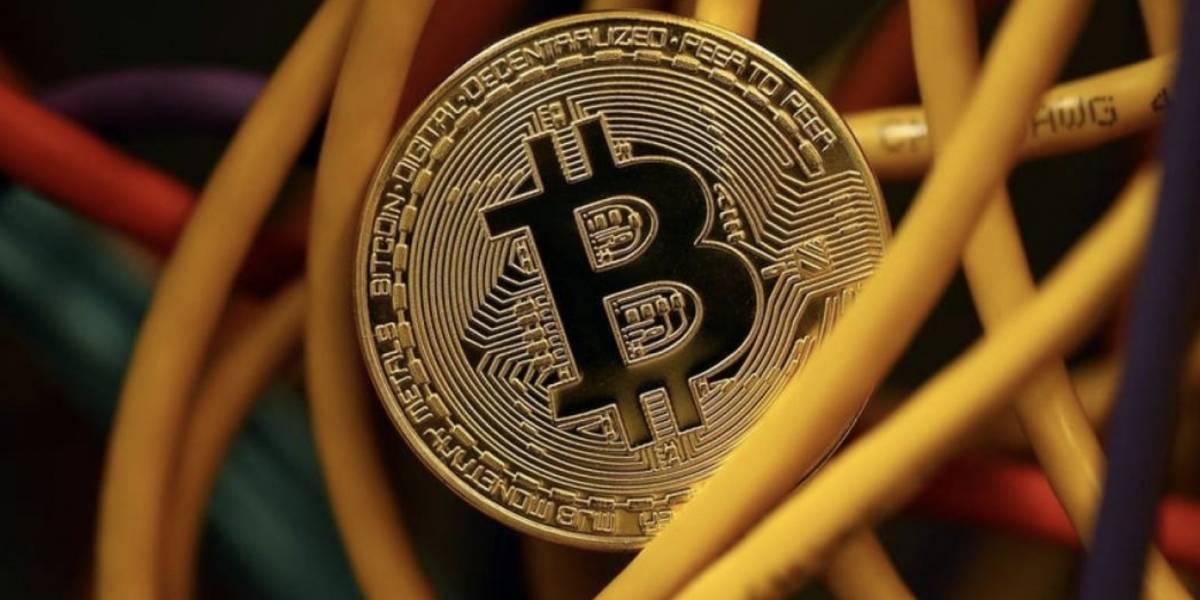 Traficante de drogas perdió gran suma de euros tras extraviar códigos de bitcoin