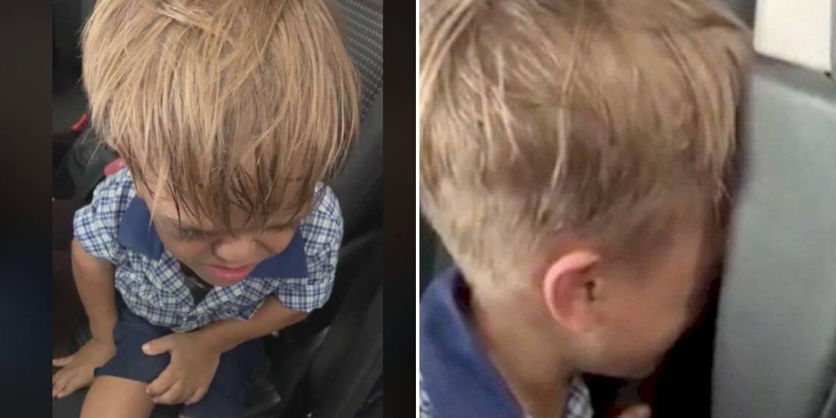 Niño australiano víctima de bullying por su enanismo quiso suicidarse