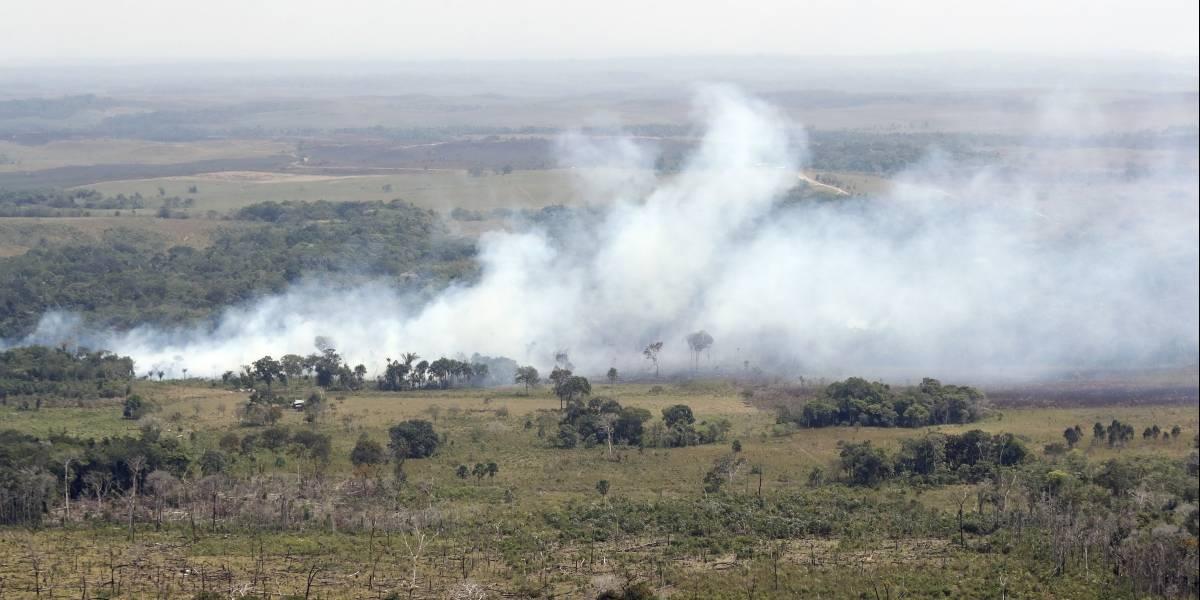 (Video) Tras apagar el incendio, así quedó La Macarena
