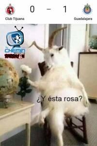 Memes J7 Clausura 2020