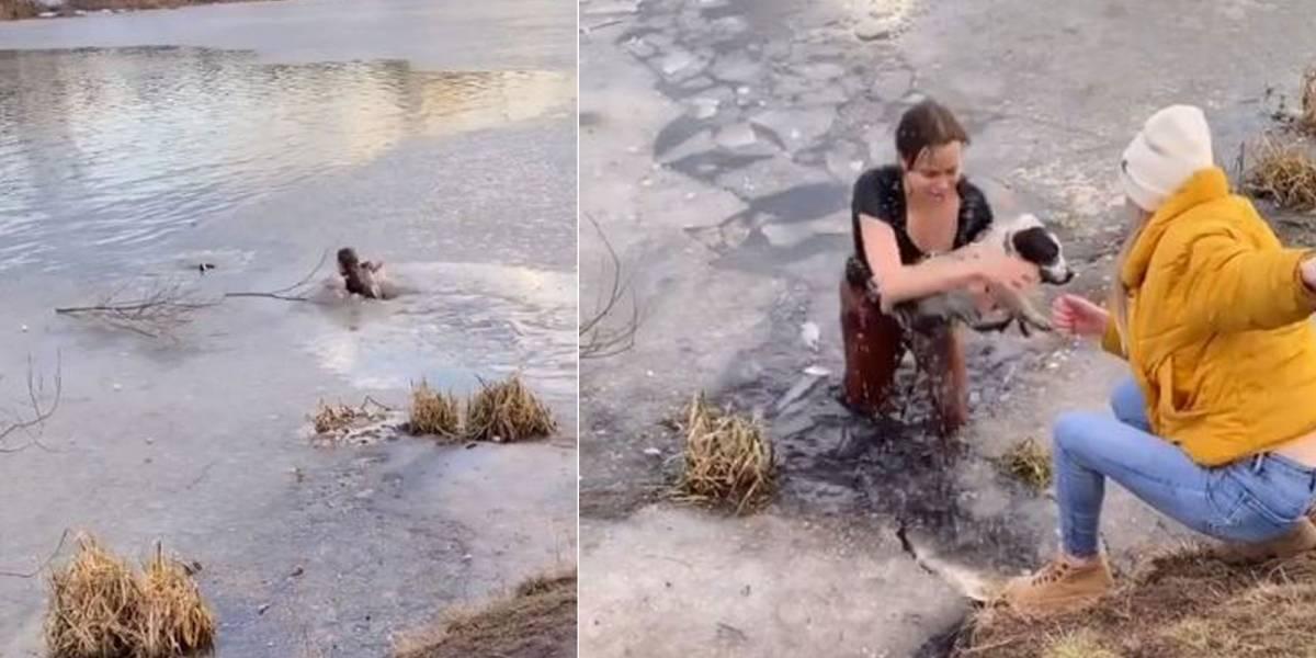 Una mujer se lanzó a un estanque congelado para salvar a su perro de ahogarse