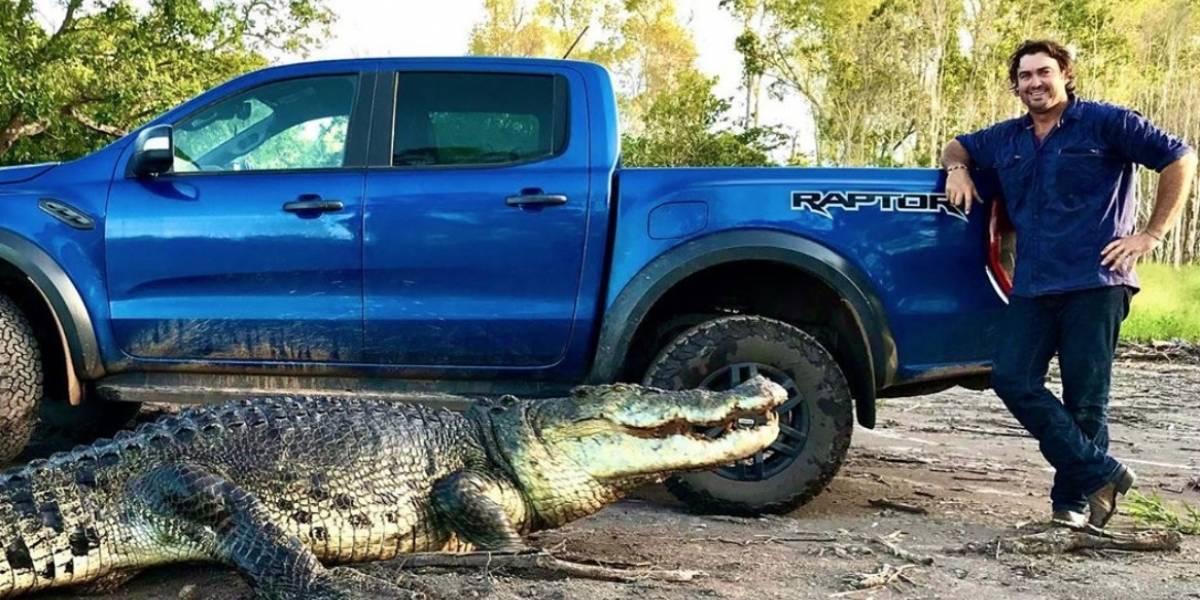 Aventureiro registra momento impressionante em que crocodilo é alimentado na Austrália