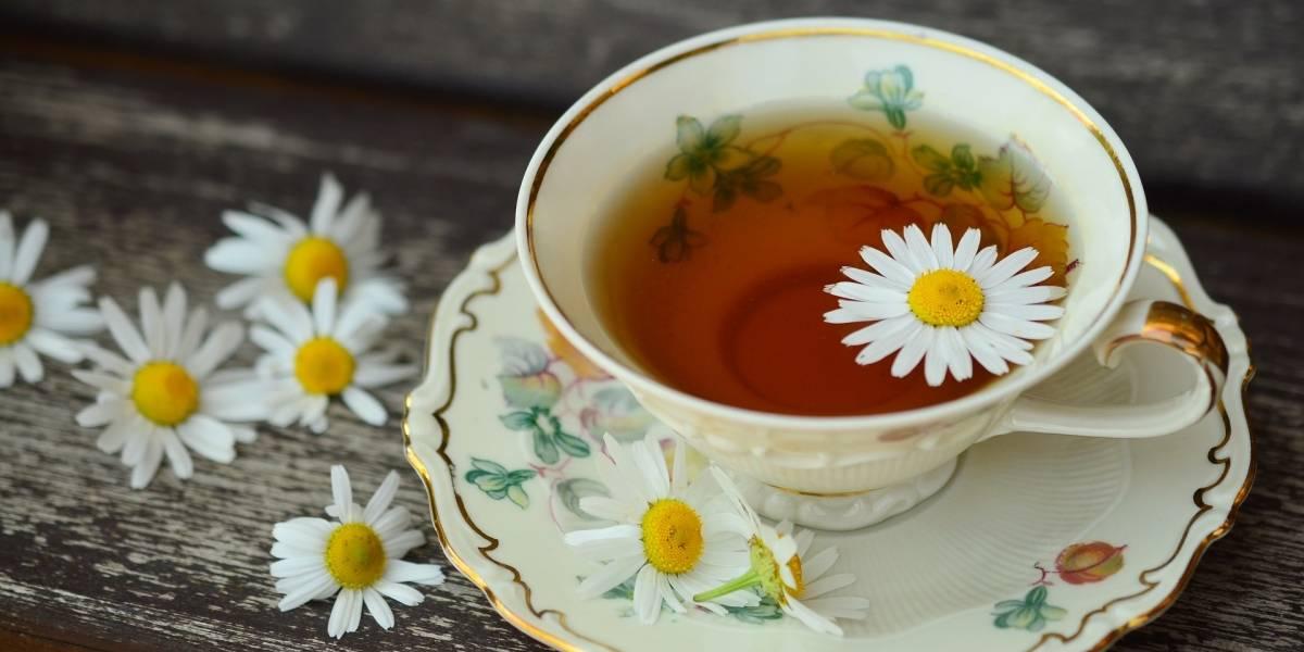 Combata a insônia e o estresse com chá de camomila antes de dormir