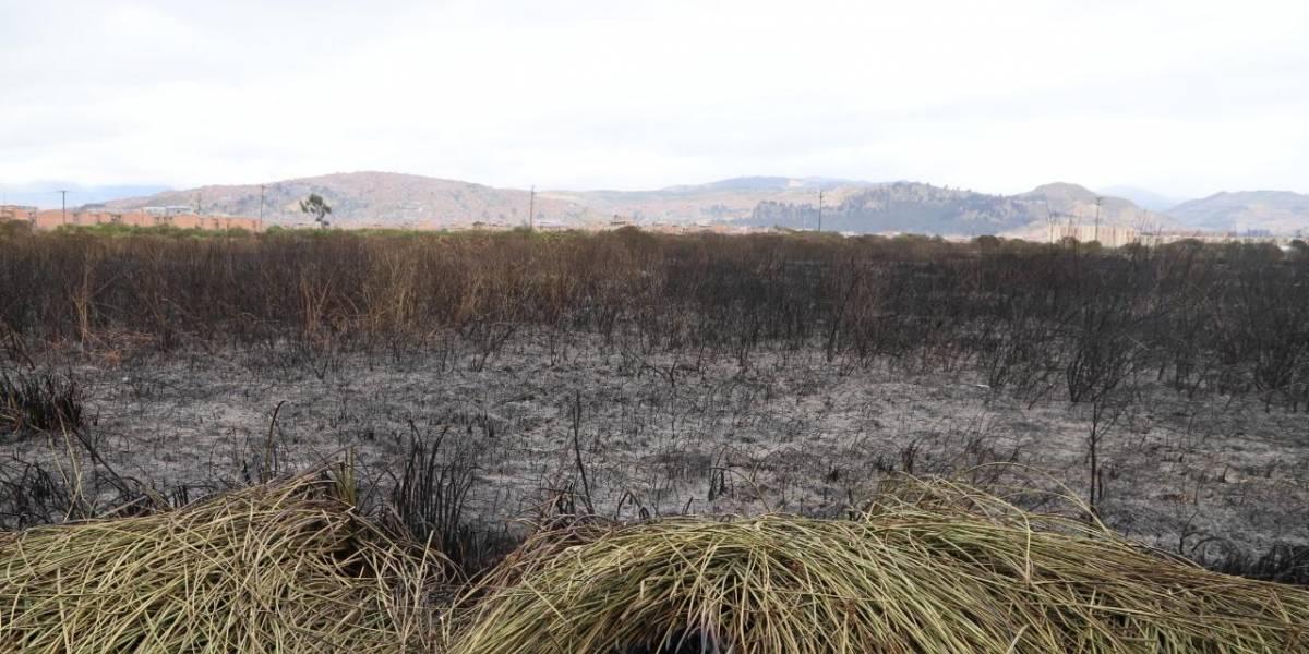 Humedal Tibanica: las llamas revelaron una crisis ambiental