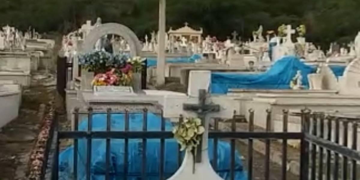 Obligan a empleados municipales de Guánica a trabajar en cementerio en condiciones insalubres