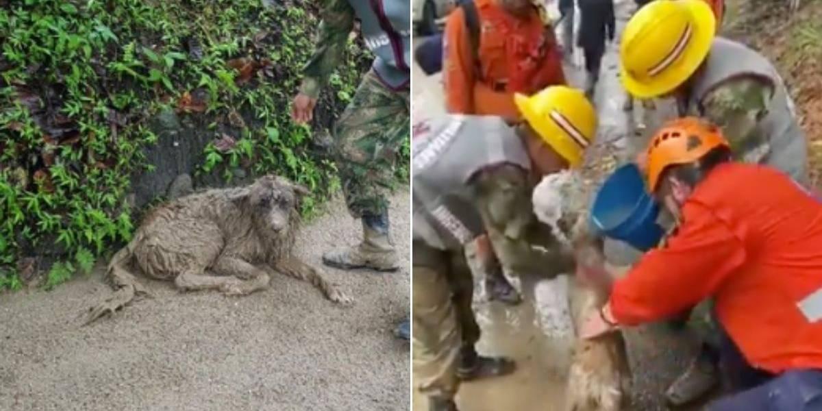 Rescatan vivo a bebe en Colombia tras ser atrapado por un alud