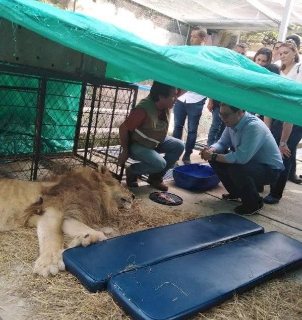 jupiter leon