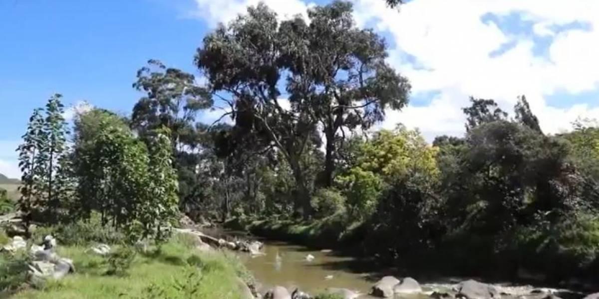Vehículo cayó a laguna en parque natural de Usme: tres personas heridas