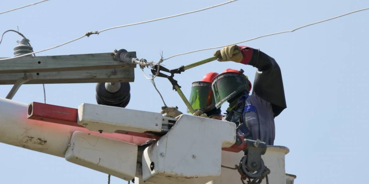 Con sofisticado sistema para robar energía eléctrica, dueños de finca tenía 12 años sin pagar por el servicio
