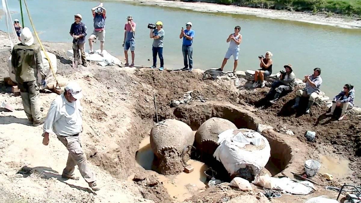 Fósil de armadillo encontrado en Argentina