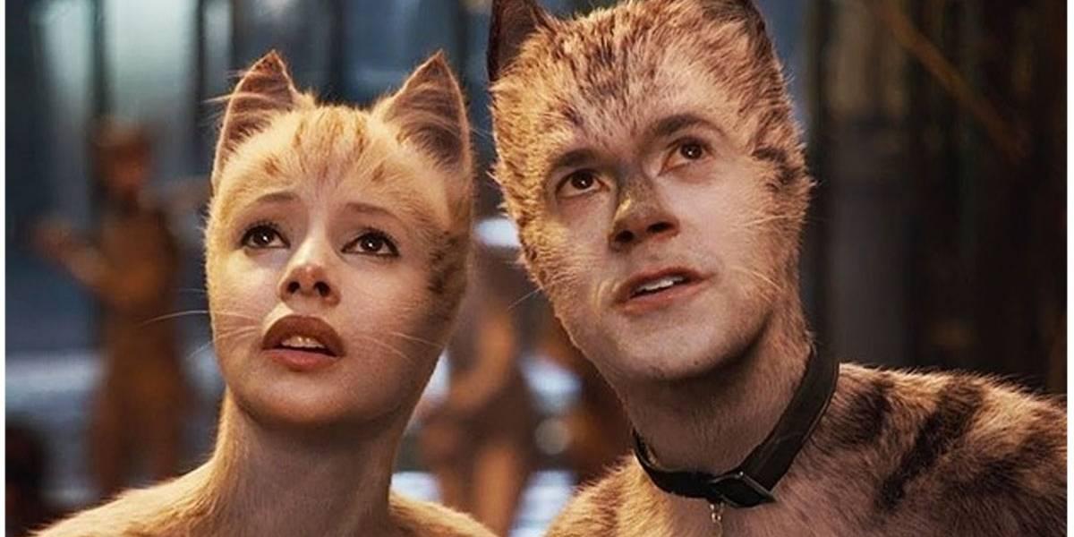 'Cats' lidera prêmio Framboesa de Ouro com Judi Dench e mais 8 indicações
