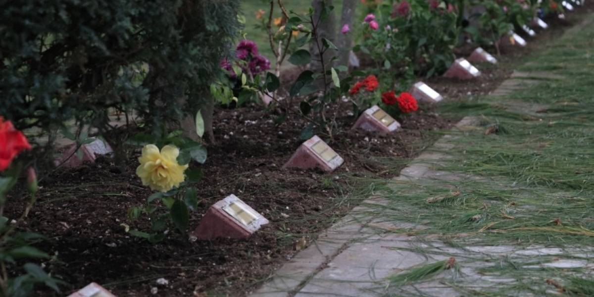 """""""Volver a nacer"""", el jardín que recordará a las niñas víctimas del Hogar Seguro"""