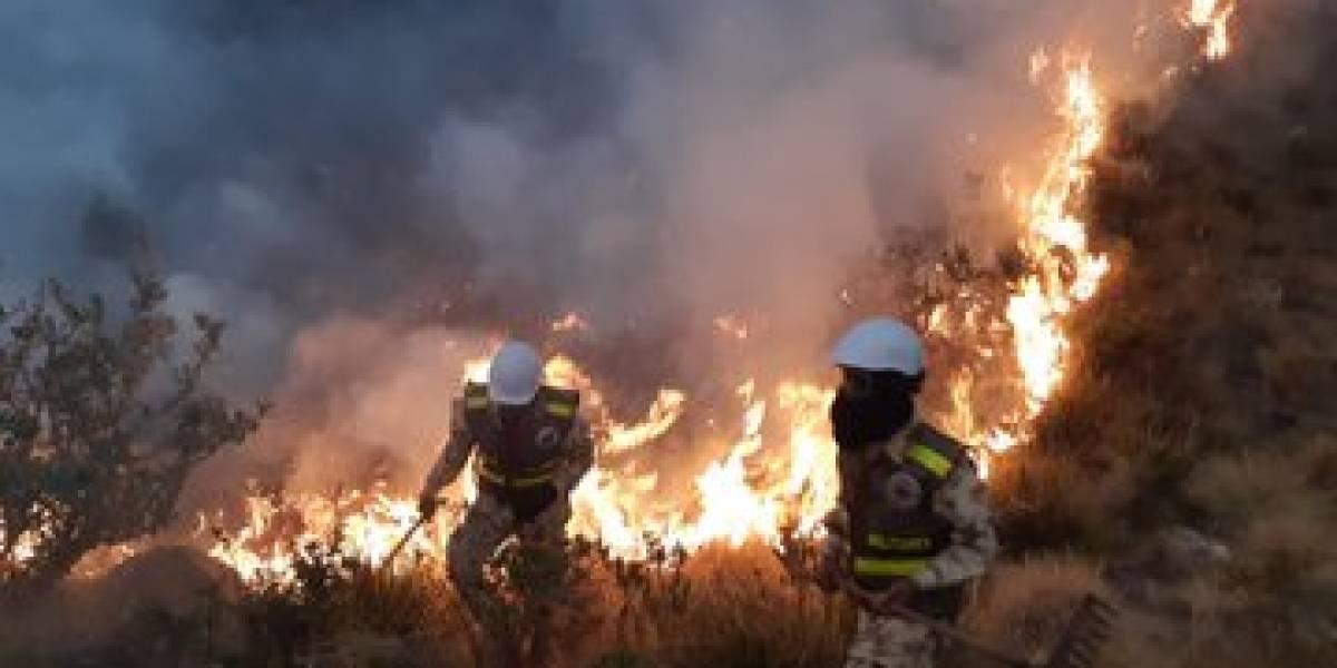 Declaran calamidad pública por incendio de páramo y frailejones en Serranía del Perijá