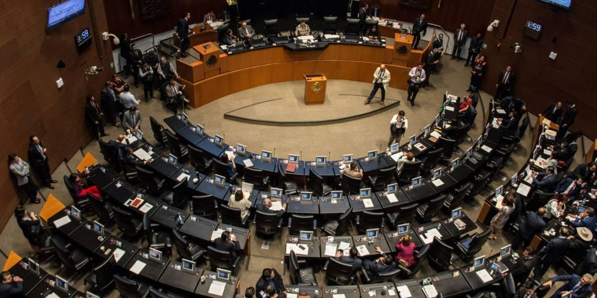 Senadores se unen para solicitar consulta popular que dé paso a apoyo económico por Covid-19