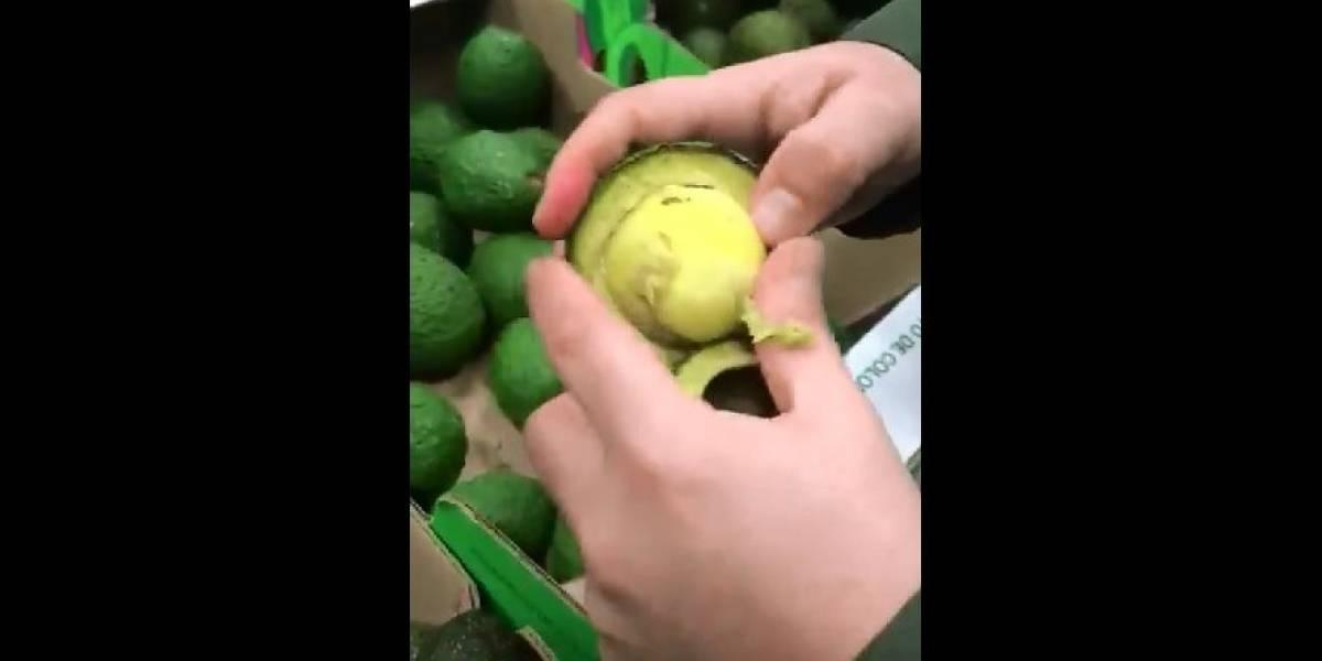 Traficantes escondem cocaína dentro de caroço de abacate