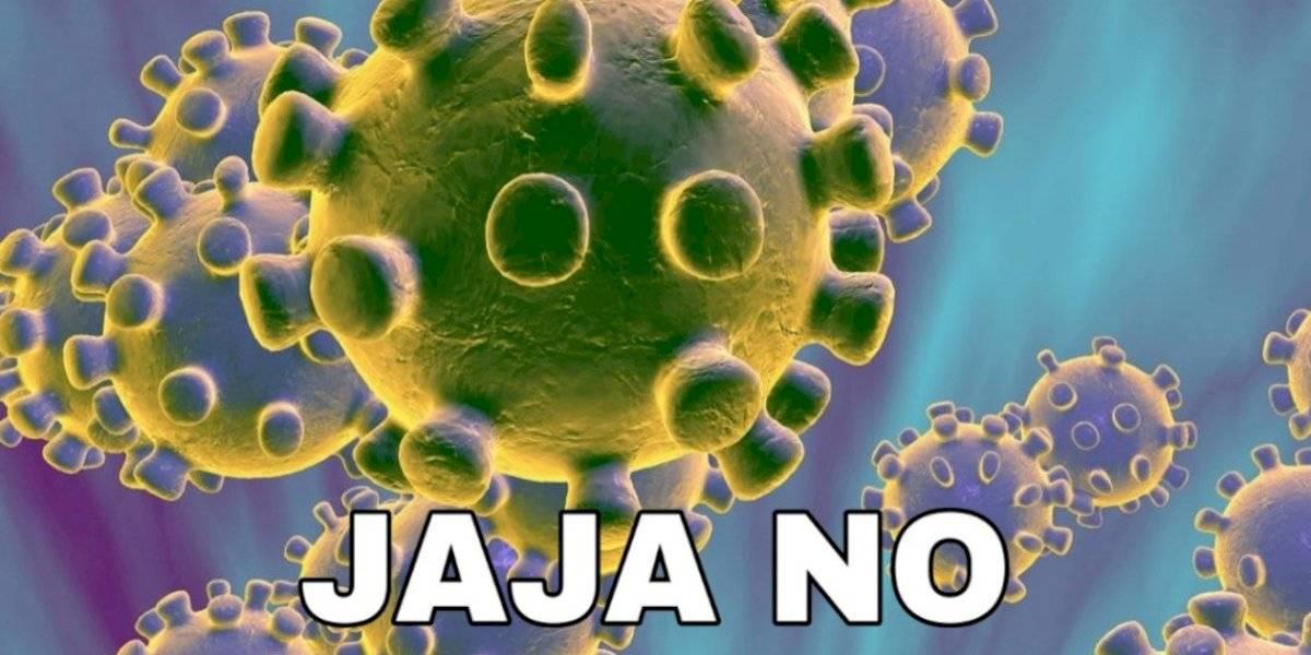 """""""Empezó la lloración"""": así fue la reacción en redes luego que confirmarán suspensión de Lollapalooza por coronavirus"""