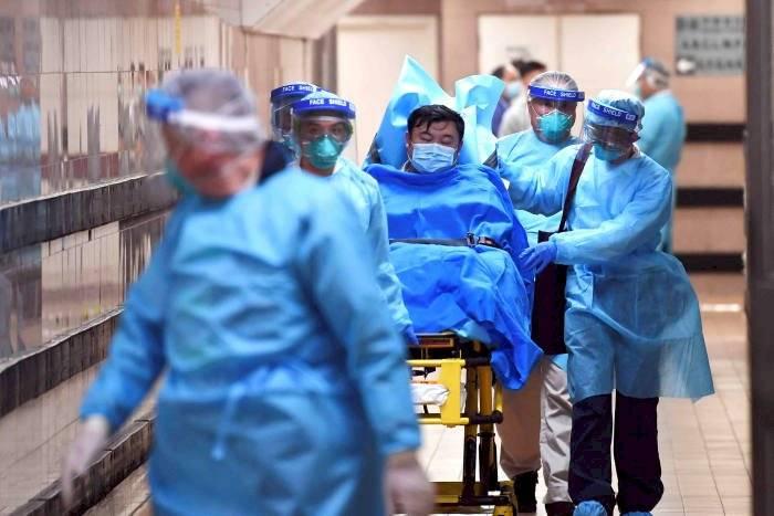 """Coronavirus: """"Se han publicado 10 estudios científicos que hablan del peligro de poblaciones de murciélagos para el ser humano"""""""