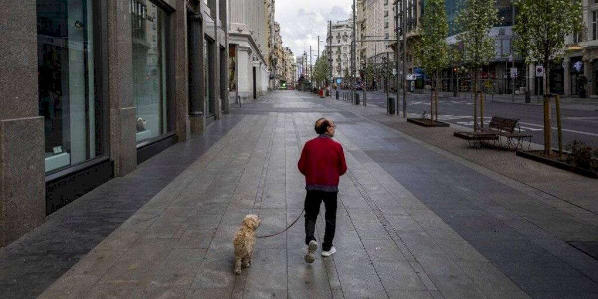 SAG detecta contaminación en alimentos para perros de la marca Cannes