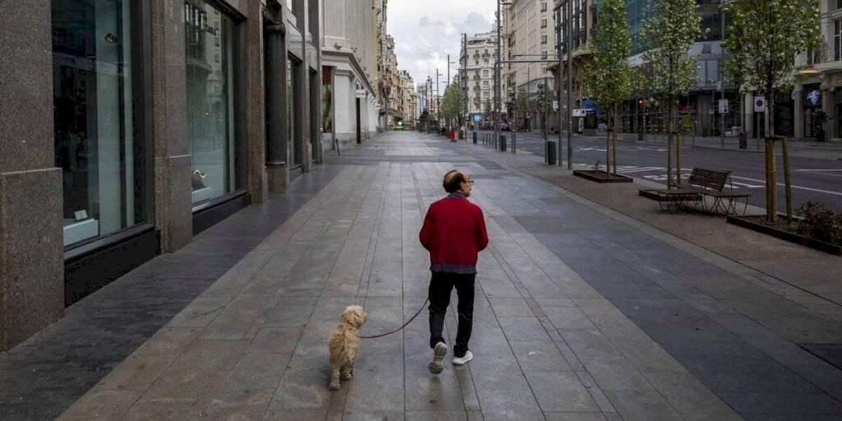 Polémica medida: en China ofrecen $24 mil por asesinar perros callejeros en medio de crisis por coronavirus