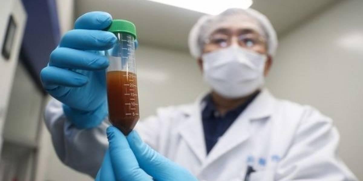 China desarrolla con éxito la vacuna contra el coronavirus