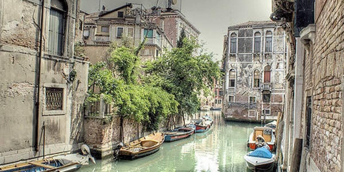 Coronavirus: canales de Venecia resurgen transparentes y limpios