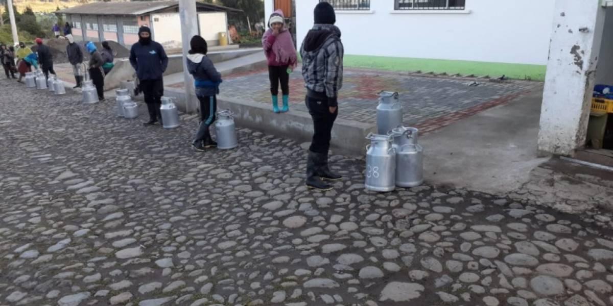 Se mantiene la producción de leche en Ecuador para mantener la seguridad alimentaria