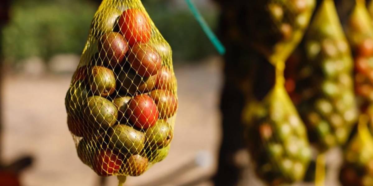 'Ciruelatón' para apoyar a agricultores del Atlántico a domicilio por Covid -19