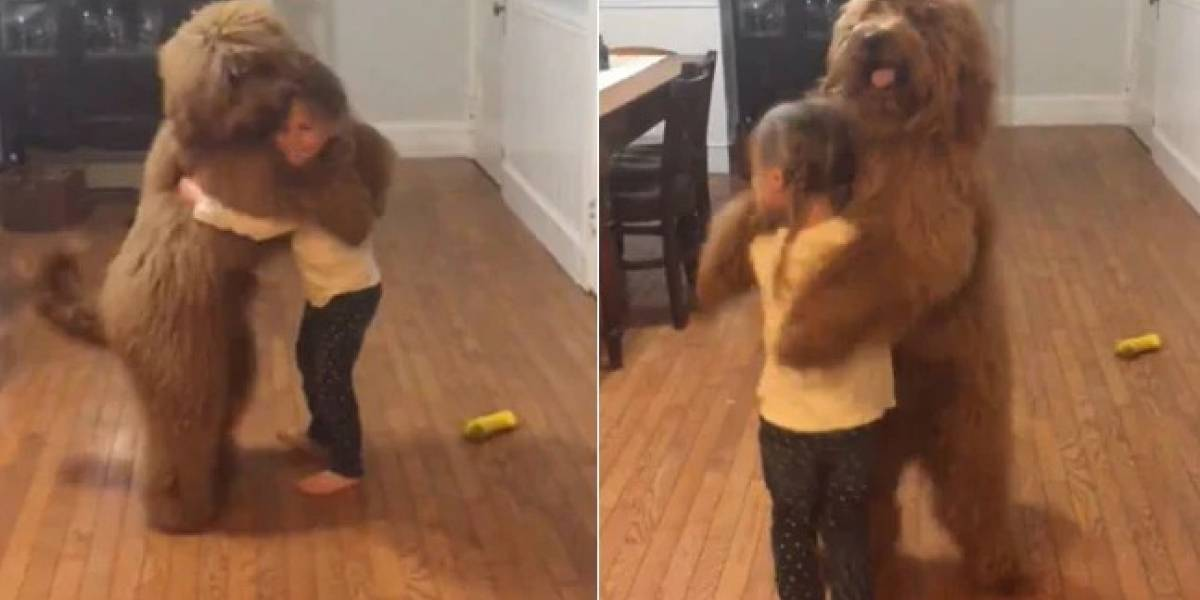 Mãe flagra filha dançando com cachorro e vídeo se torna viral