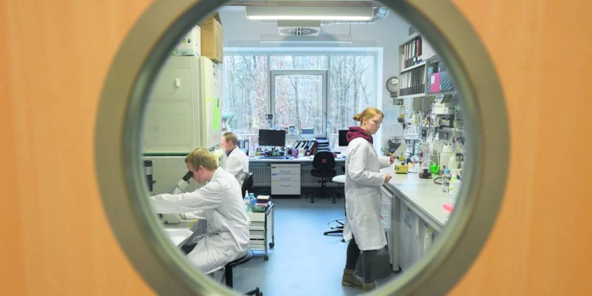 Coronavirus: ¿Cómo y cuánto tiempo tarda en producirse una vacuna?