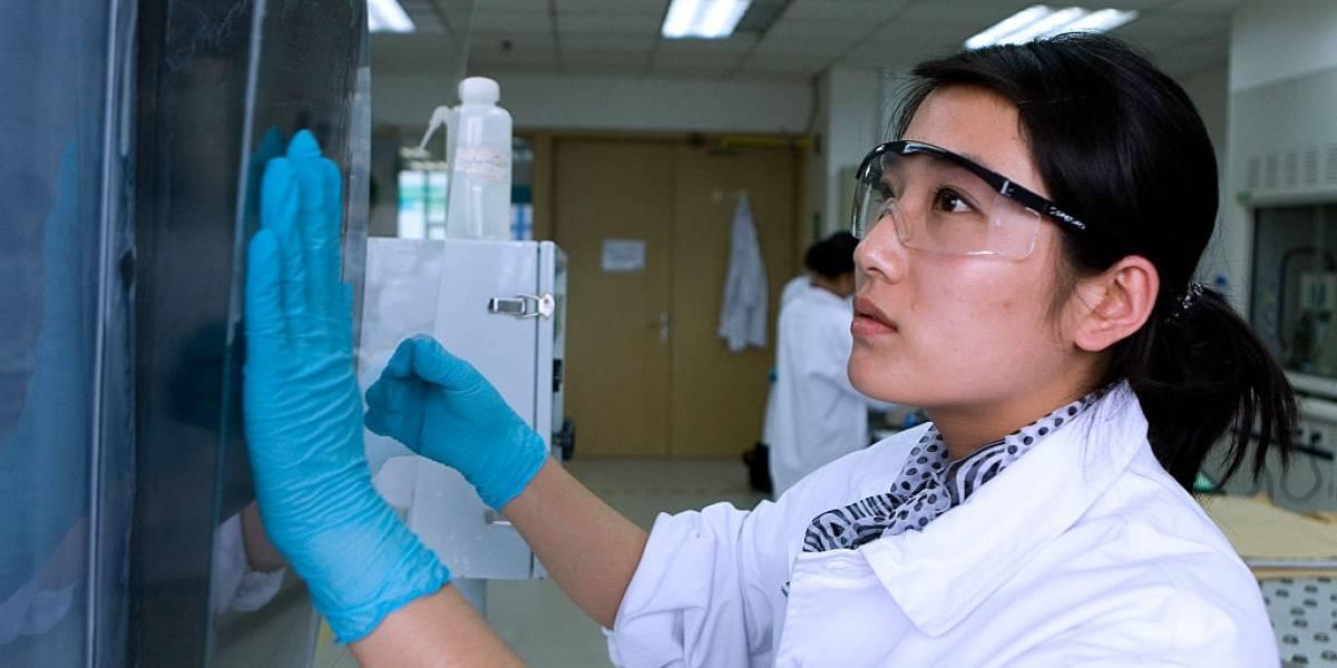 Capes abre 2,6 mil bolsas para pesquisas relacionadas ao coronavírus