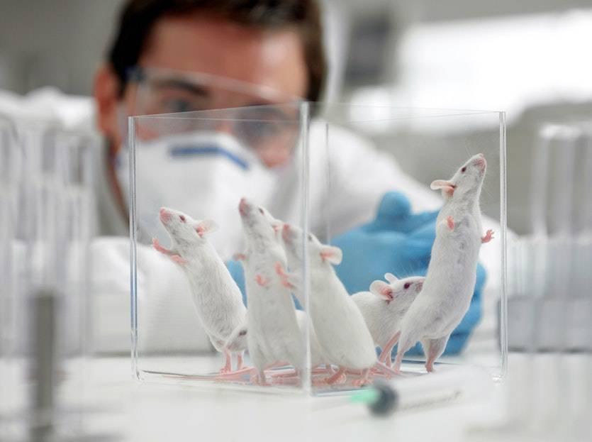 Vacuna rusa contra el COVID-19 pasó primera fase de desarrollo