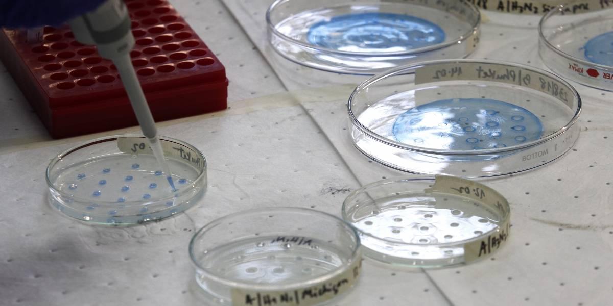 Minsal confirma quinto fallecido por coronavirus y aumentan a 1.610 los casos en Chile