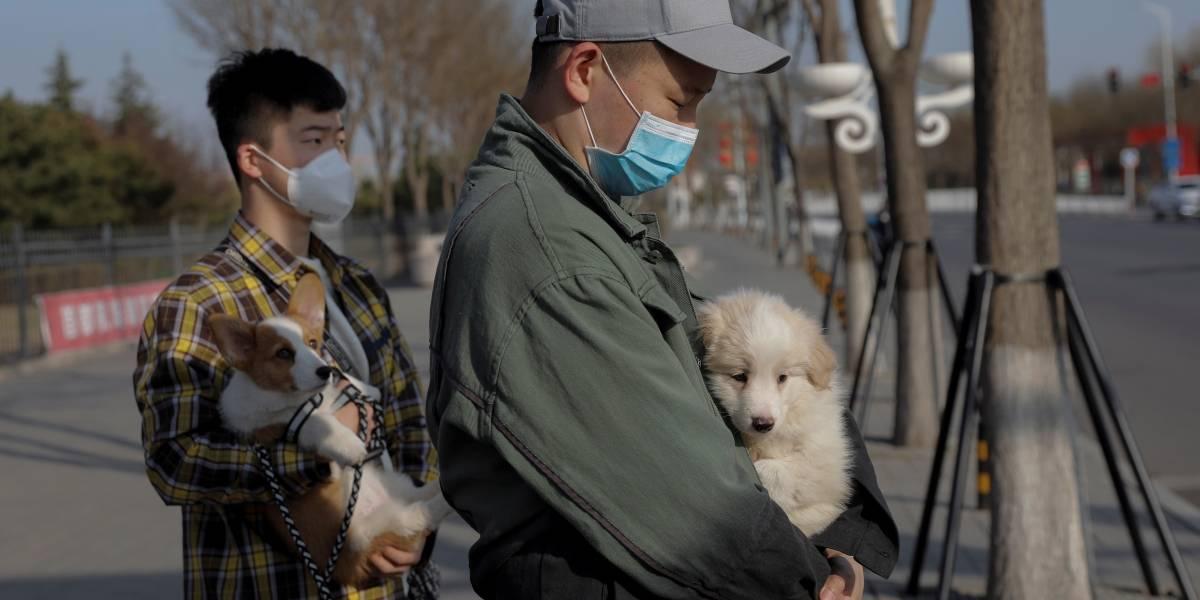 """China deja de tener nuevos contagios pero los """"importados"""" siguen creciendo"""