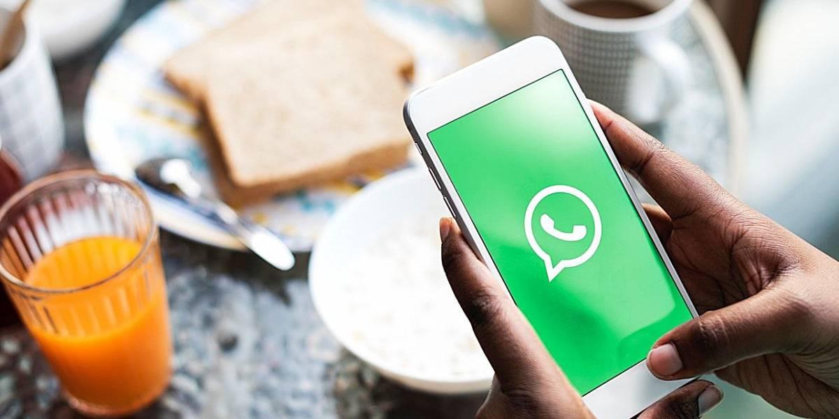 Coronavirus: WhatsApp implementará un botón para detectar las fake news del COVID-19