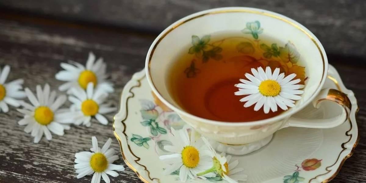 4 beneficios que ofrece el té de manzanilla para el organismo