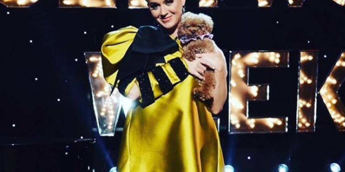 Katy Perry presume su 'baby bump' en medio de la crisis por coronavirus
