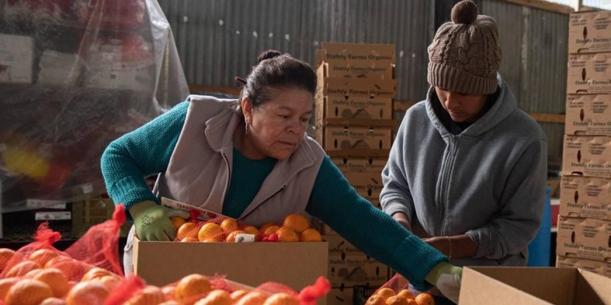 """OMC, OMS y ONU advierten de """"penuria alimentaria"""" por el coronavirus"""