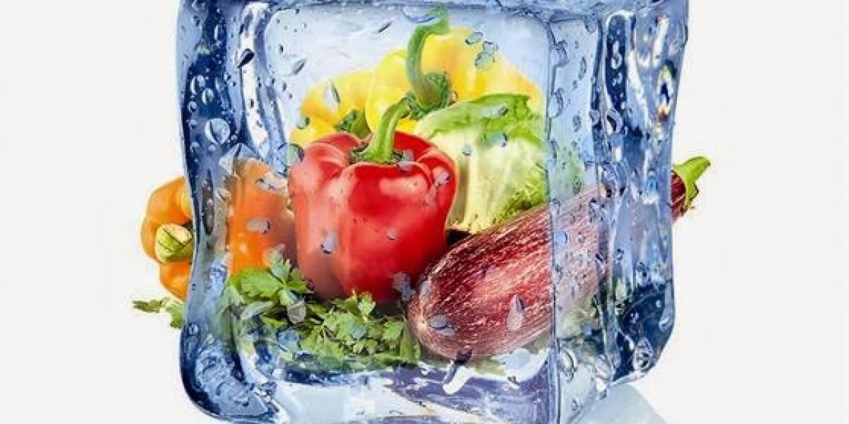 Claves para mantener los alimentos congelados