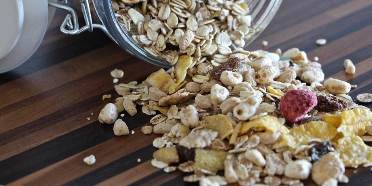 Avena sin gluten: El cereal ideal para tener una dieta saludable