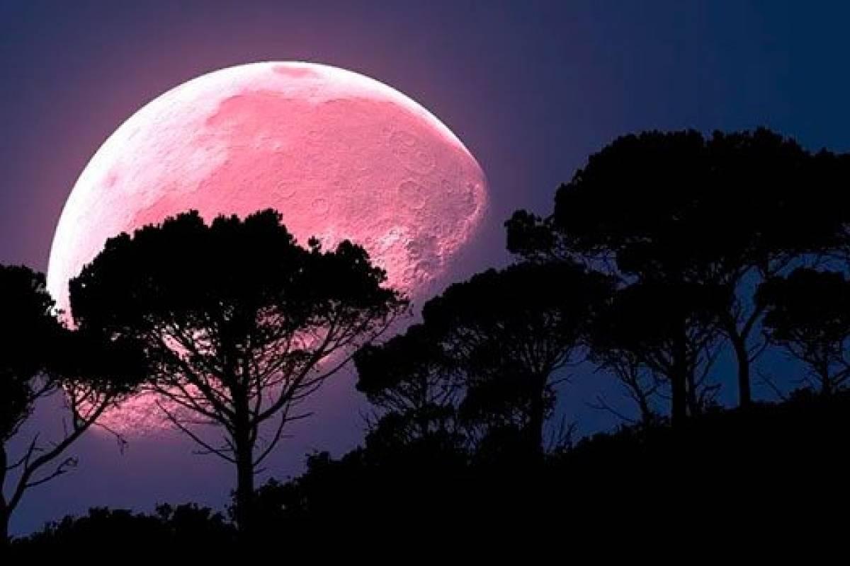 Luna rosa 2020: ¿Qué es? ¿Cuándo puedes verla?