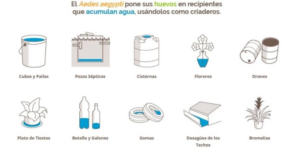 """Inician campaña """"Páralos en seco"""" para controlar mosquito Aedes aegypti desde casa"""