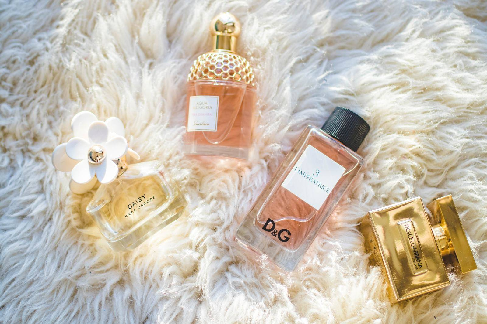 Todo sobre perfumes
