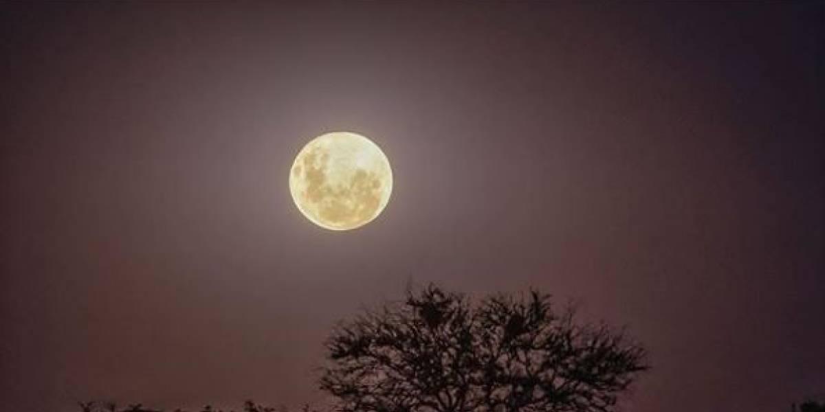 Superluna Rosa de abril, le contamos su significado y cuándo verla