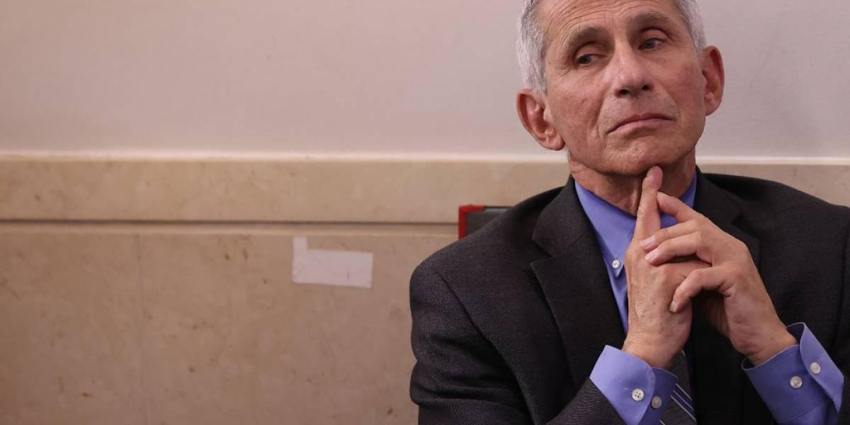Médico responsável pela luta contra o coronavírus nos EUA recomenda eliminar um costume mundial