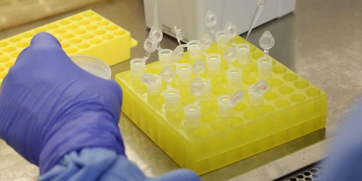 Anvisa aprova realização de testes rápidos de covid-19 em farmácias