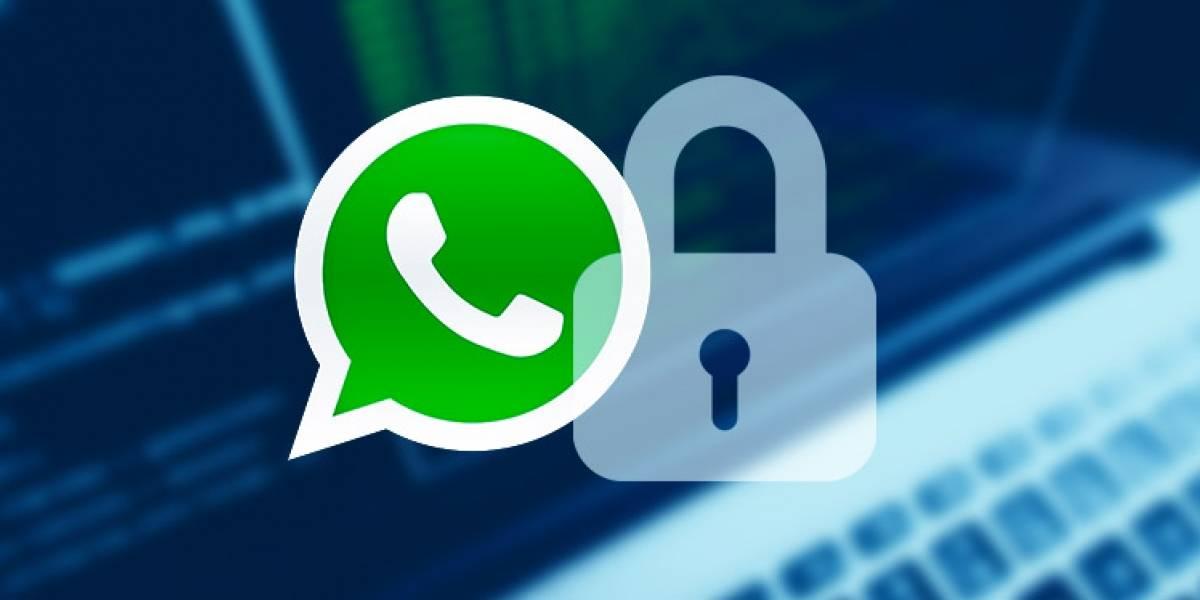 WhatsApp: ¿quieres que nadie lea tus chats? Estas aplicaciones los bloquean y protegen